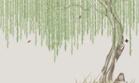 Giấy dán tường 3D 5D tại Sơn La | Các mẫu giấy dán tường rẻ đẹp