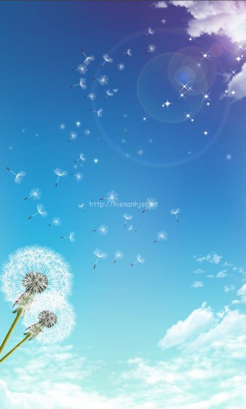 5D089-2-tranh dan tran boi canh bau troi hoa co may