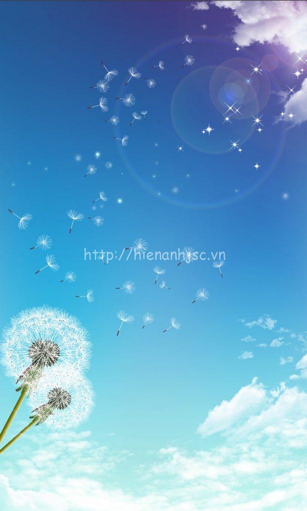 Giấy dán tường 5D - Tranh dán trần bối cảnh bầu trời, hoa bồ công anh 5D089