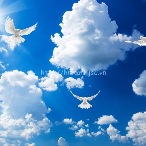 5d088-4-tranh dan tran boi canh troi xanh chim bo cau tu do