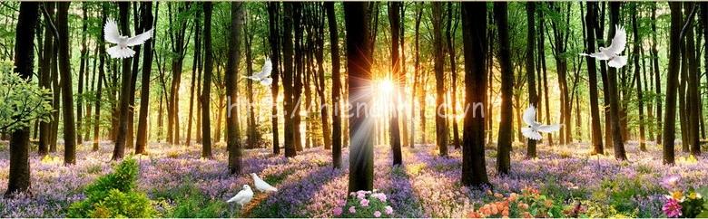 Tranh dán tường - Tranh dán tường bối cảnh rừng xanh buổi sớm mai 5D116