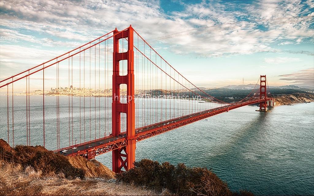 Từ cây cầu, du khách sẽ được tận hưởng khung cảnh hùng vĩ khi nhìn ra vùng vịnh, thành phố, Thái Bình Dương và Mũi Marin ở phía bắc của cây cầu.