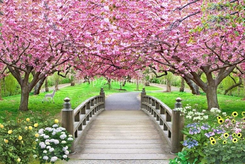 Tranh dán tường 5D - Cầu gỗ và vườn hoa anh đào 5D137