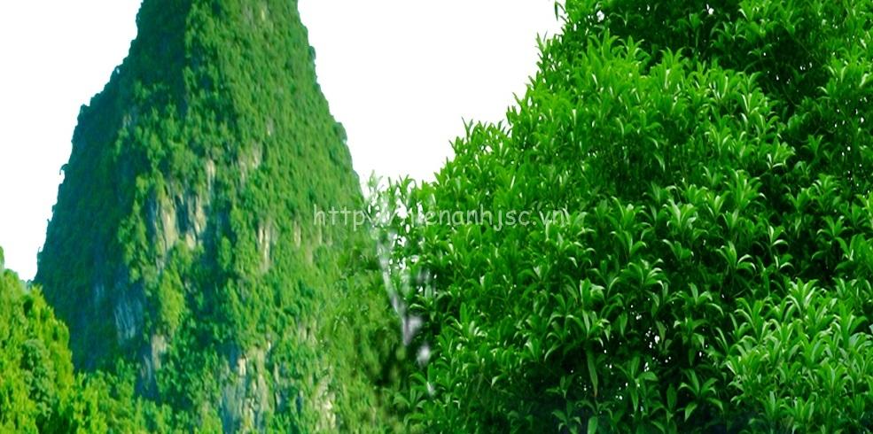 Tranh dán tường 5D - Tranh thác nước sơn thủy hữu tình 5D186