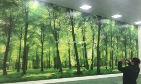 Thi công tranh dán tường 3D ở xưởng làm việc tại Long Biên Hà Nội