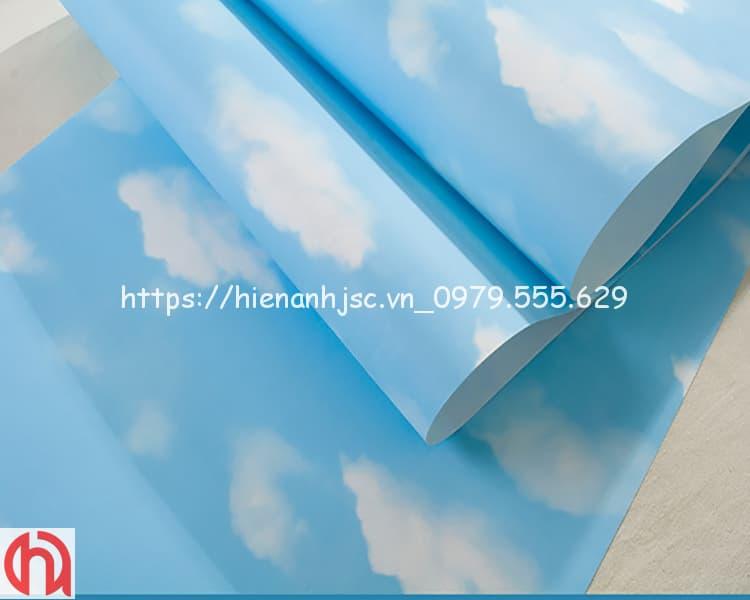 giay-dan-tuong-hoa-tiet-may-cho-be-3D221-3