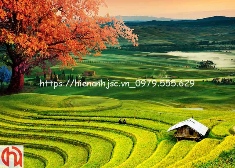 tranh-dan-tuong-boi-canh-dong-que-5d199-4