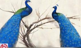 tranh-dan-tuong-họa-tiet-doi-cong-5d210-2