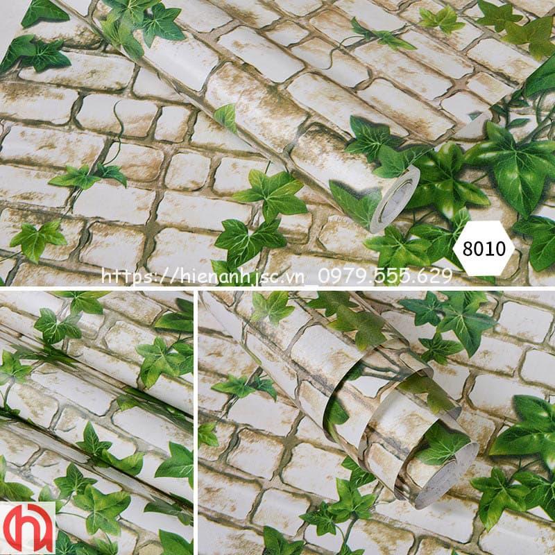 giay-dan-tuong-hoa-tiet-cay-day-leo-3d249-3