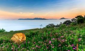 200   mẫu tranh dán tường phong cảnh đẹp nhất 2018